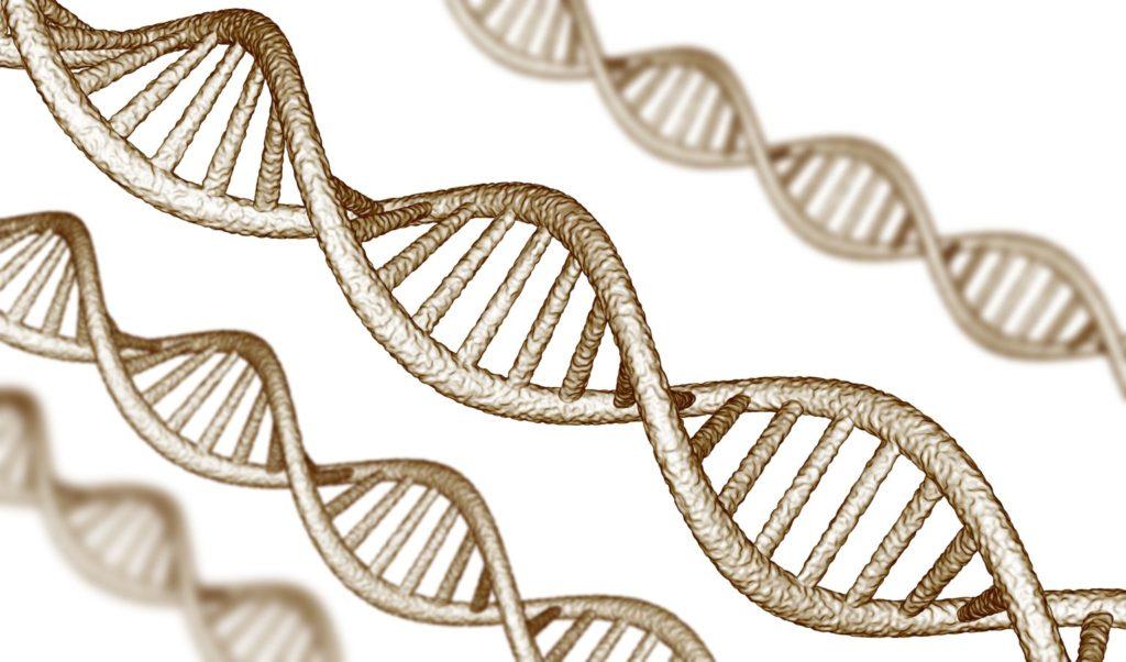 генетика и здоровье человека гены днк